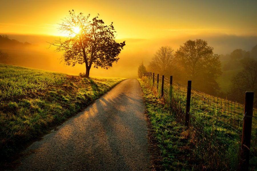 Weg mit Sonne
